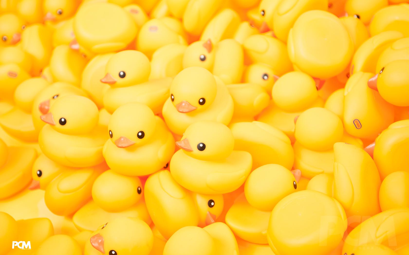 rubber duck wallpaper - photo #16